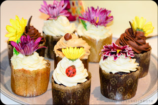 Cupcakes - photo by Shelley Banks