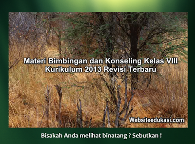 Materi BK Kelas 8 Kurikulum 2013 Revisi 2019/2020