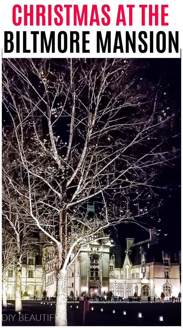 Christmas tour of the Biltmore