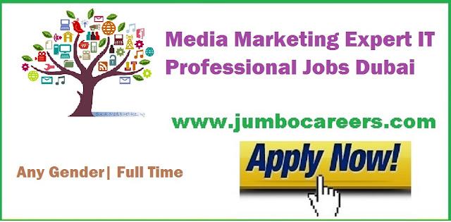 Media-Marketing-Expert-IT-Professional