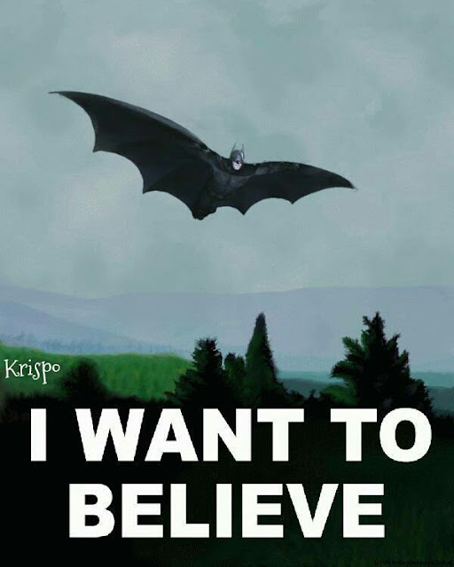 batman volando con el lema I want to believe