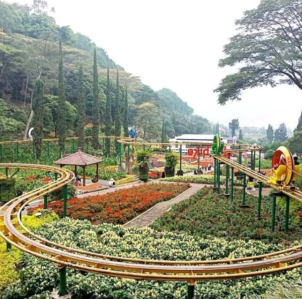 Taman Rekreasi Selecta Wisata Populer Di Batu Malang Yang Punya Sejuta Warna Bunga Kepengen Wisata