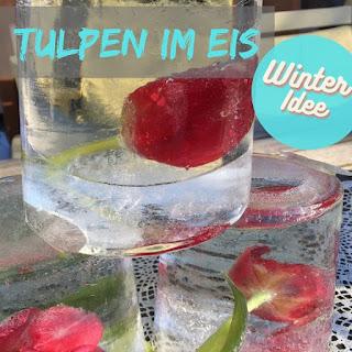 Winteridee Tulpen in Eis