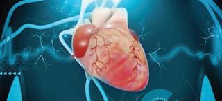 Rekomendasi Dokter Spesialis Penyakit dalam Kardiovaskular di Jakarta Selatan