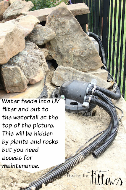 Building a backyard pond at Poofing the Pillows. backyard pond, pond with waterfall, water features, backyard waterfeatures, ponds, fish pond, koi pond.