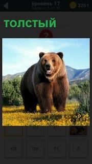 Медведь больших размеров и толстый на поляне около деревьев идет по своим делам