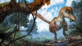 como era el dinosaurio en ambar