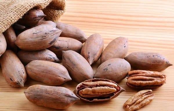What are the benefits of American walnuts for women