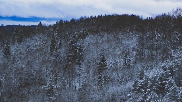 خلفيات,تساقط الثلج,تساقط الثلوج,فيديو,خلفيات جميلة,ملكة الثلج,دمج الثلج