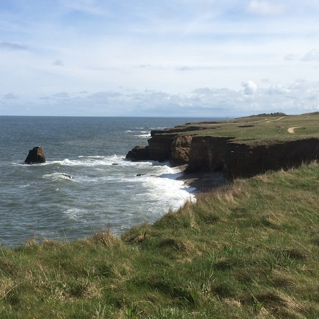 8 Favourite North East Coastal Family Walks souter & the leas