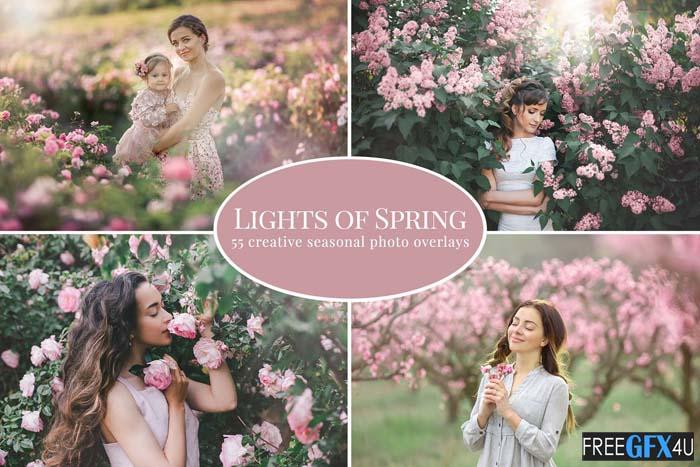 Lights of Spring photo overlays
