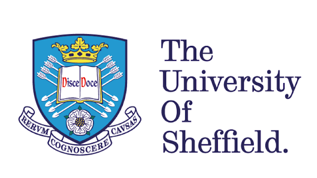 منحة مقدمة من جامعة شيفيلد لدراسة البكالوريوس في المملكة المتحدة