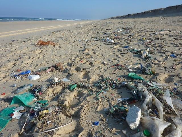 यात्रा पर जाएँ लेकिन प्लास्टिक ना ले जाएँ!