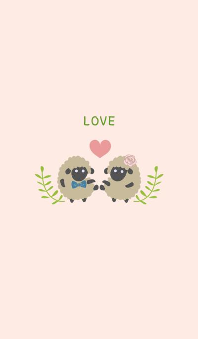 Black face sheep couple