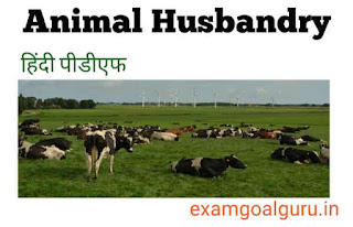 Animal husbandry book pdf in hindi