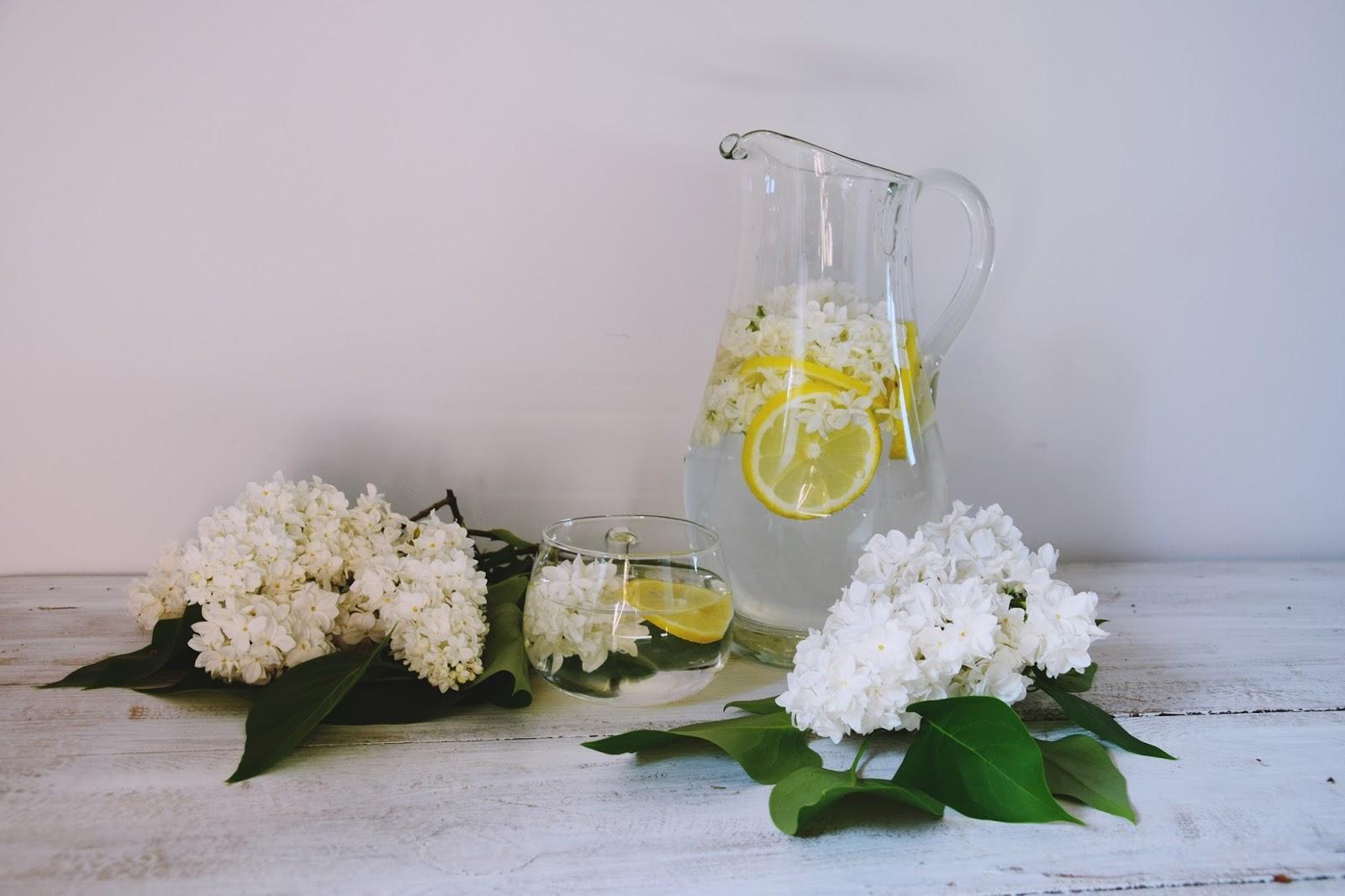 lemoniada z bzu przepis