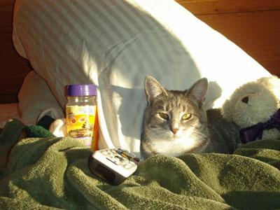 Cat U00e1logosuper Super Happy Face Wiki Roblox Fandom Free