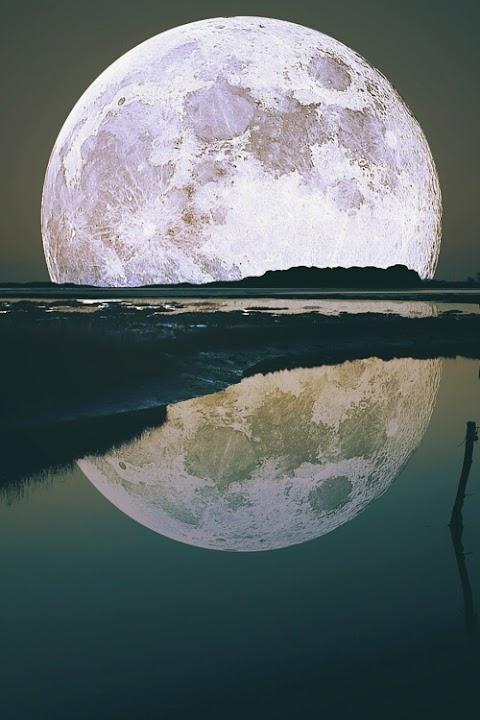 CUENTO Las huellas en la luna | Mariano Atzin Nieto Silva (Atzin Capote)