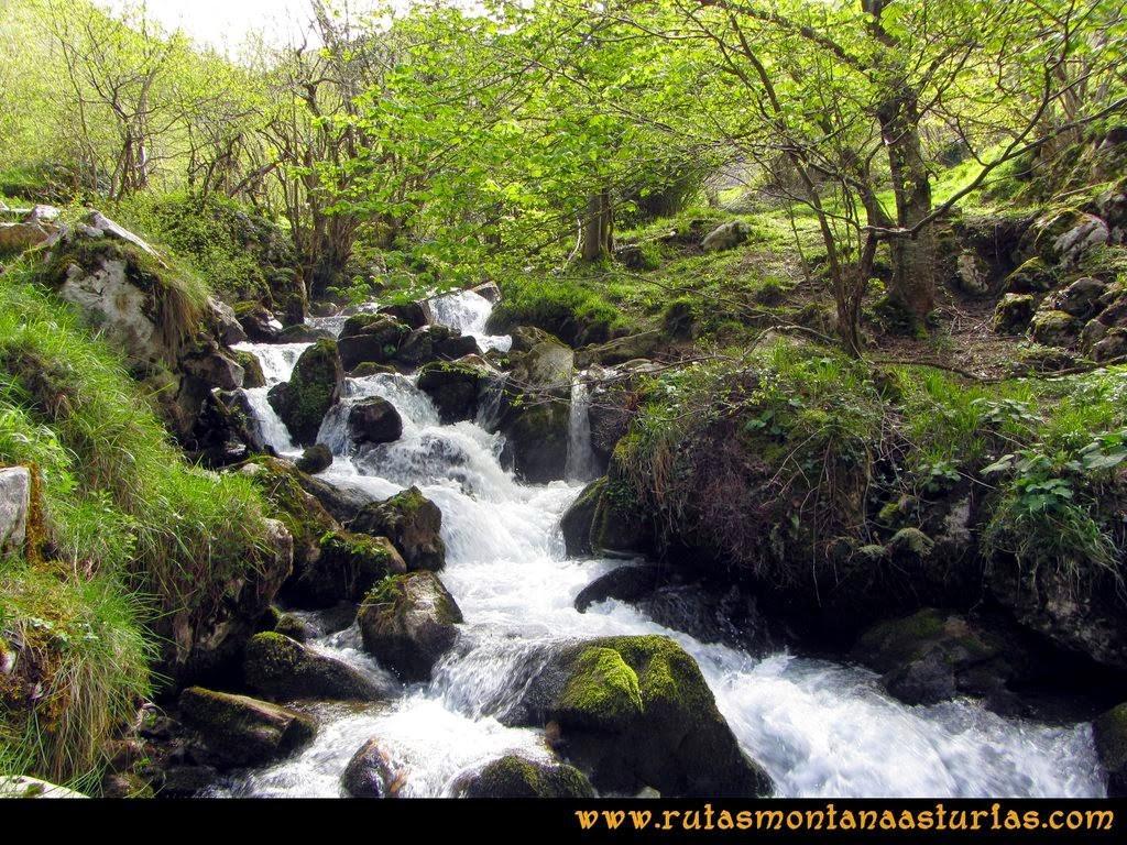 Ruta Peña Redonda: Río Pino