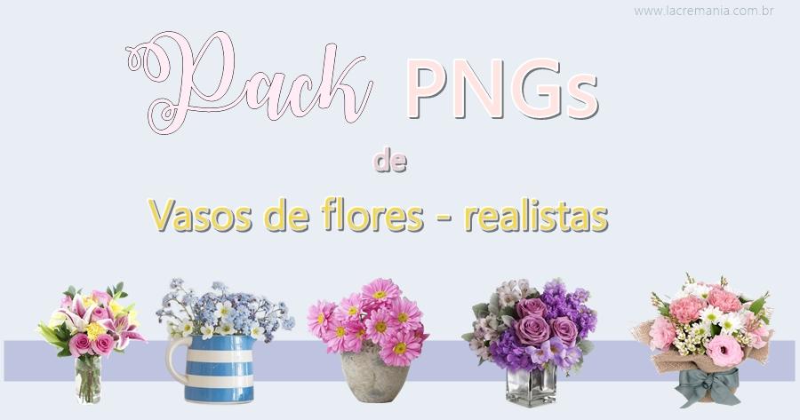 vaso de flores em png