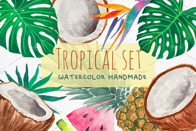 Tropical Clipart - Hand painted