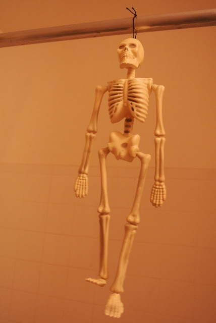Skeleton, Home Decor, Dollar Tree