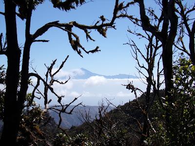 Der Teide von La Gomera aus