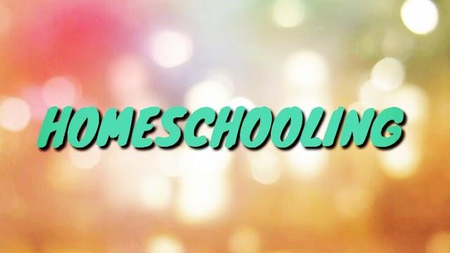 """""""Homeschooling"""" jadi Pilihan di Tengah Pandemi COVID-19"""
