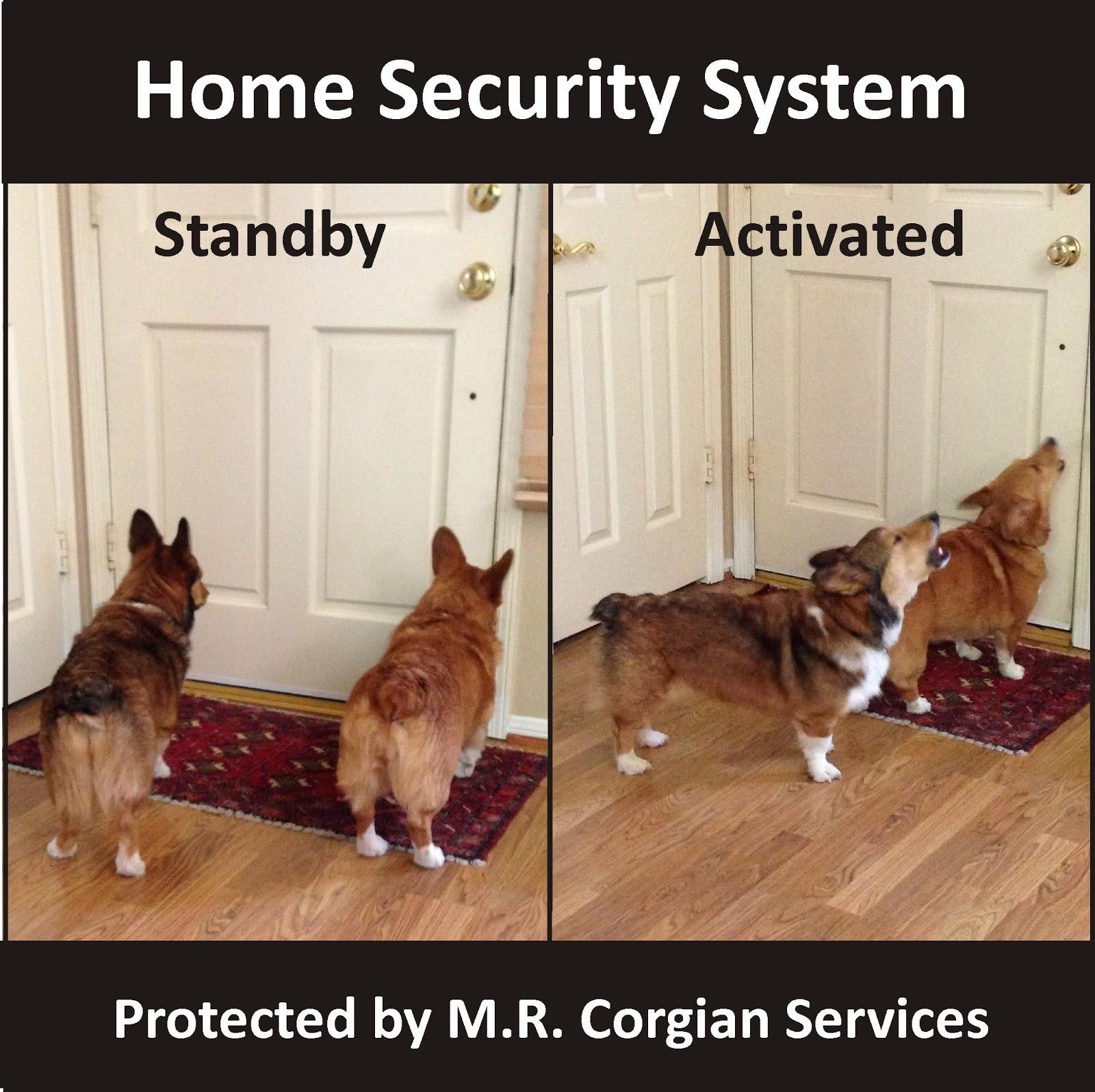 Security Alarm Jokes