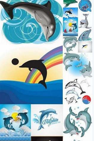 Vector clipart – Fotolia – Collection of sea dolphin illustration for children's books [AI, EPS, SVG]