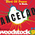 Cancelan festival Woodstock 50 y revelan los motivos