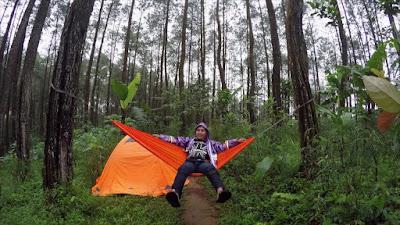 Hutan Pinus Kiskendo