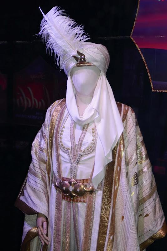 Prince Ali costume Aladdin