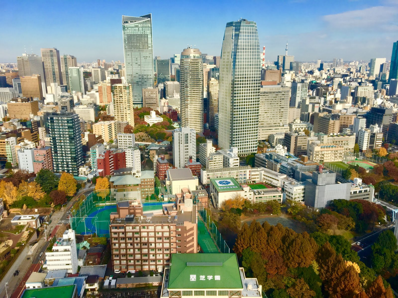 View of Tokyo from the Tokyo Tower