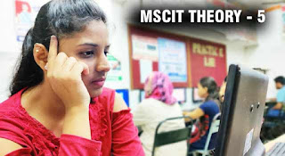 mscit final exam questions