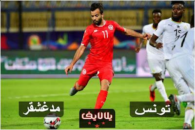 مشاهدة مباراة تونس ومدغشقر اليوم بث مباشر فى ربع نهائى كأس امم افريقيا