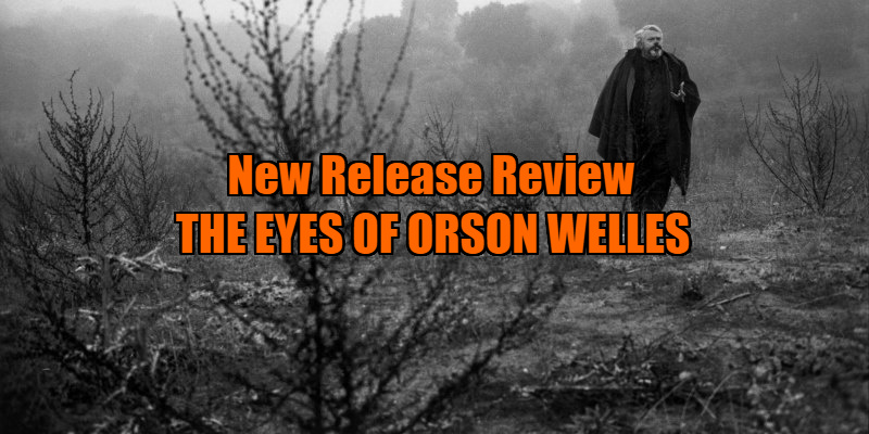 THE EYES OF ORSON WELLES review