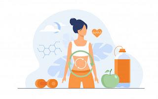 Sistem Pencernaan 1