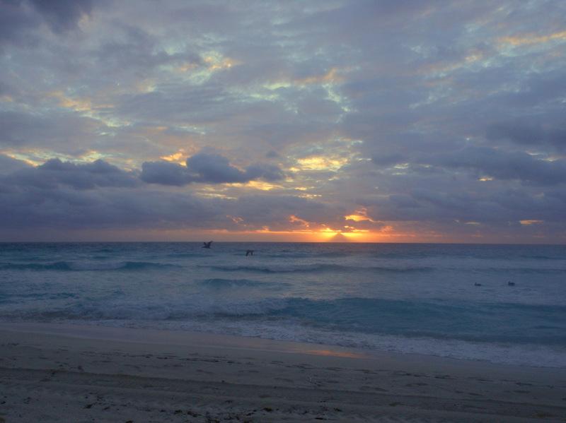 The Islander Resort Daytona Beach Fl