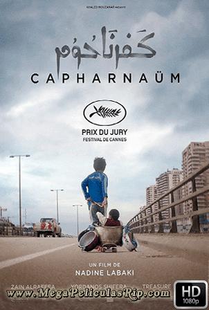 Cafarnaum [1080p] [Latino-Arabe] [MEGA]