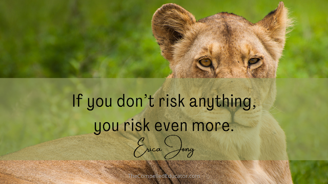 Quote-about-risk