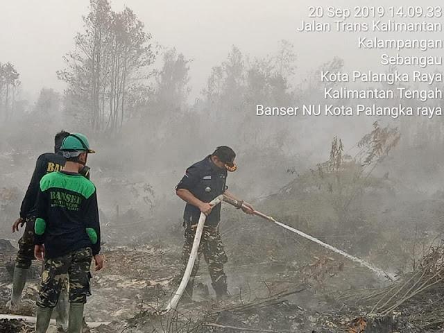 Keren!! Banser Kalteng Berjuang Memadamkan Kebakaran Hutan di Palangkaraya