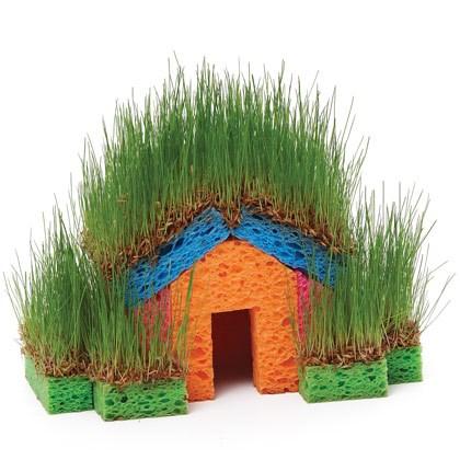 Little Grass House