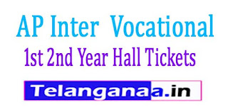 AP Inter (Vocational) 1st 2nd Year Hall Tickets 2017