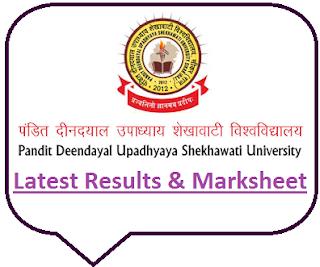 PDUSU Sikar Results 2020