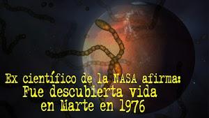 Ex científico de la NASA afirma que fue descubierta vida en Marte en 1976