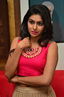 Akshita super cute Pink Choli at south indian thalis and filmy breakfast in Filmy Junction inaguration by Gopichand ~  Exclusive 051.JPG