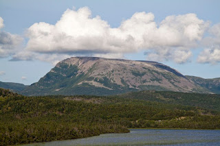 Gros Morne Newfoundland, Rock Ptarmigan