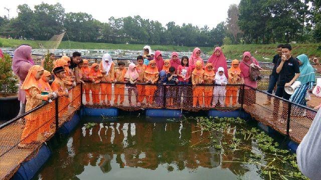 Nama Wadah Budidaya Ikan