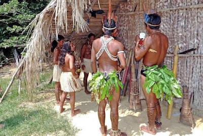 The Amazon Rainforest Facts